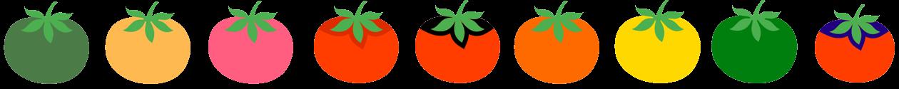Gène-tomate-4