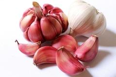 garlic-618400_640.jpg